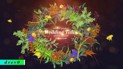 پروژه افترافکت نمایش عناوین جشن عروسی Wedding Titles