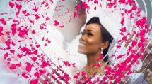 مجموعه فوتیج ترانزیشن عروسی Wedding Transitions