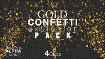 مجموعه فوتیج موشن گرافیک اجزای تزیینی طلایی Gold Confetti