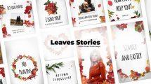 پروژه افترافکت استوری اینستاگرام با برگ Leaves Stories