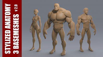 مجموعه مدل سه بعدی آدمک Stylized Anatomy Basemesh