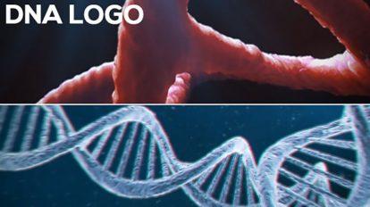 پروژه افترافکت نمایش لوگو با دابل هلیکس DNA Logo Pack