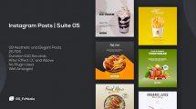 پروژه افترافکت مجموعه پست اینستاگرام Instagram Posts Suite 05