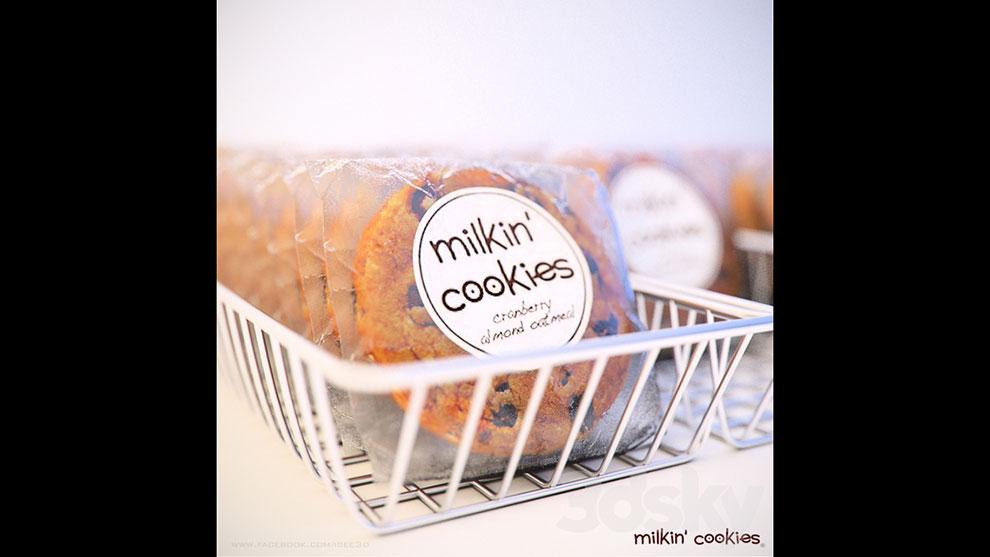 مدل سه بعدی شرینی کوکی در سبد Milkin Cookies in Basket