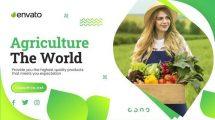پروژه افترافکت تیزر تبلیغاتی کسب و کار کشاورزی Agriculture Farming Business