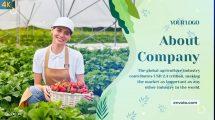 پروژه افترافکت اسلایدشو کشاورزی Agriculture Slideshow