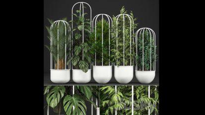 مجموعه مدل سه بعدی گلدان طبیعی Plant Collection 328