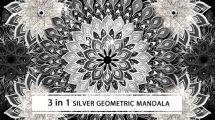 فوتیج موشن گرافیک نقوش انتزاعی Silver Geometric Mandala