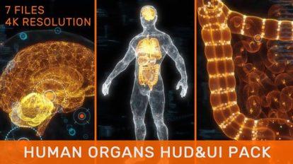 مجموعه فوتیج موشن گرافیک اعضای بدن انسان Human Organs HUD UI Pack