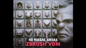 مجموعه براش زیبراش دماغ ZBrush VDM Nasal Areas