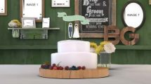 پروژه افترافکت گالری عکس عروسی Wedding Photo Gallery