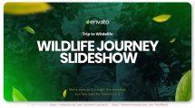 پروژه افترافکت اسلایدشو گردش در حیات وحش Wildlife Journey Slideshow
