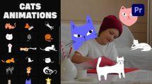 پروژه پریمیر مجموعه انیمیشن کارتونی گربه Cartoon Cats Animations
