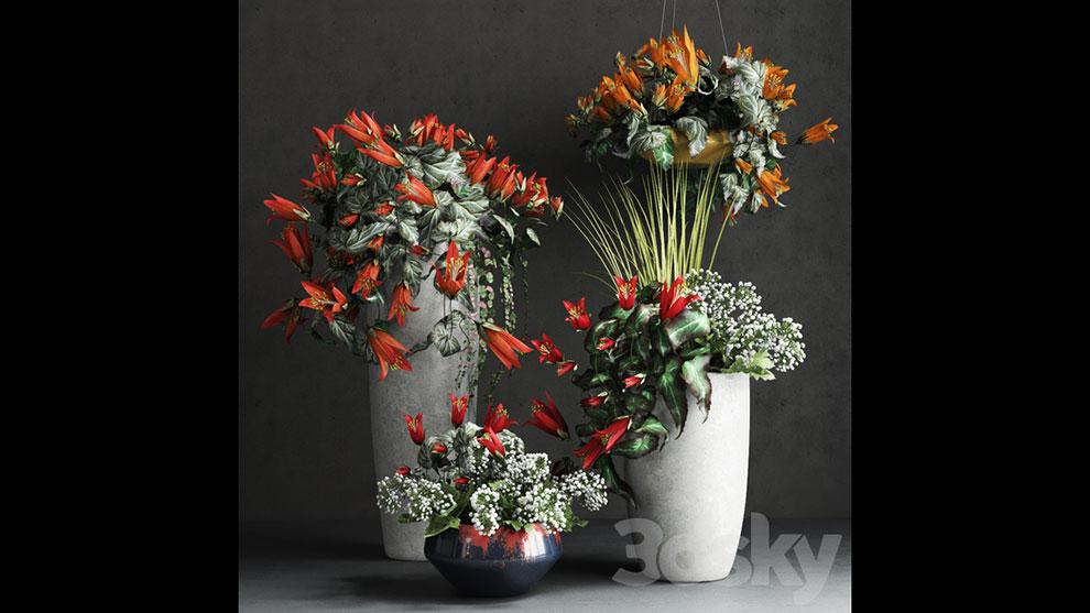 مدل سه بعدی مجموعه گلدان Confetti