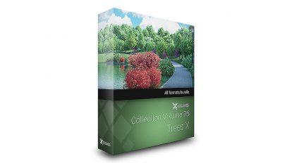 مجموعه مدل سه بعدی درخت CGAxis Models Volume 76 Trees X