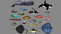 مجموعه مدل سه بعدی ماهی Low Poly Fish Collection 3