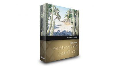 مجموعه مدل سه بعدی گیاهان استوایی CGAxis Models Volume 85 Exotic