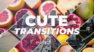 پروژه پریمیر مجموعه ترانزیشن Cute Transitions