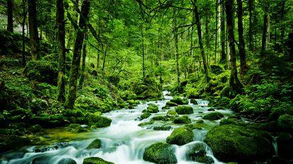 مجموعه افکت صوتی حرکت و جریان آب